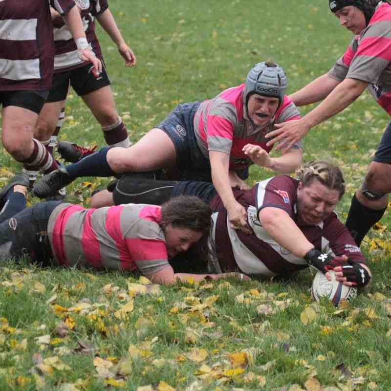 Ladies XV v Olney Ladies - 8th November 2015