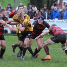 Local Derby - Western Counties West