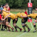 Winchester take points in local derby