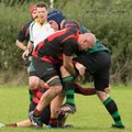 Alcester vs Harborne