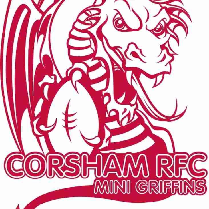 Mini Rugby Season Starts Sunday 6th September