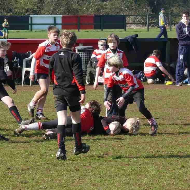 Summer Rugby Camp 1-5th August