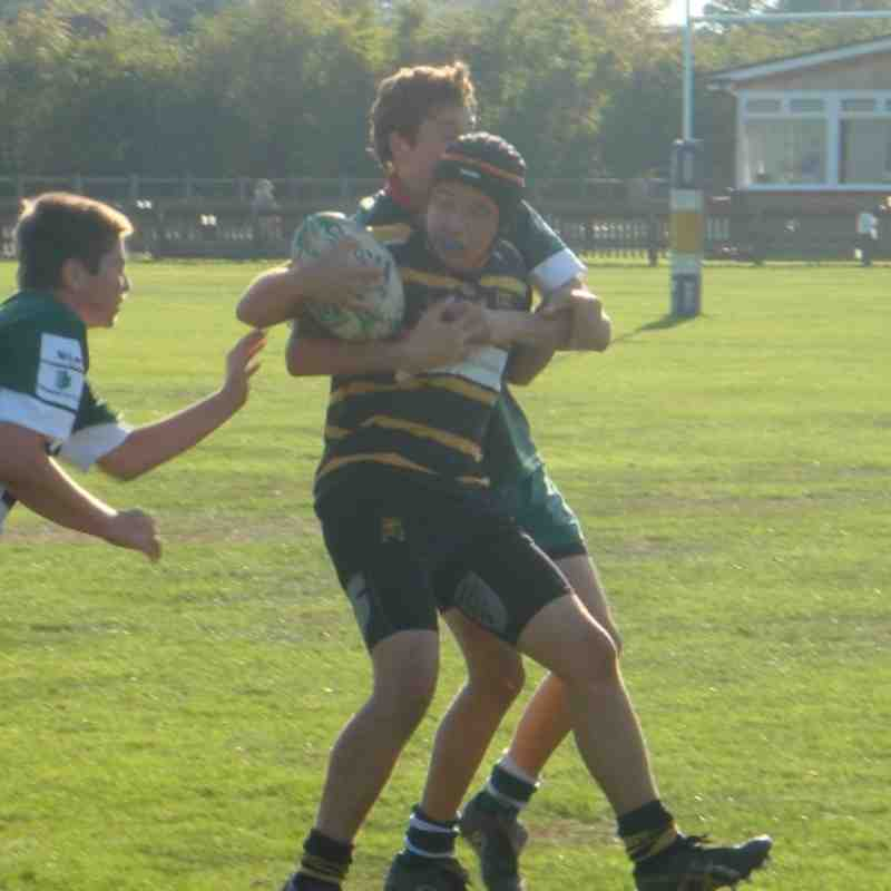 Reading Rugby Festival 2 Oct 2011 - U15s