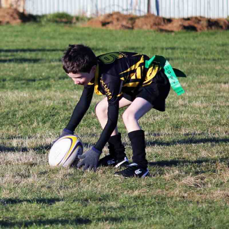 P1-3 Wasps Vs Blairgowrie January'12