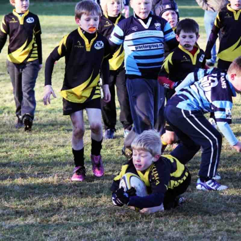 P4-5 Wasps Vs Blairgowrie January 2012