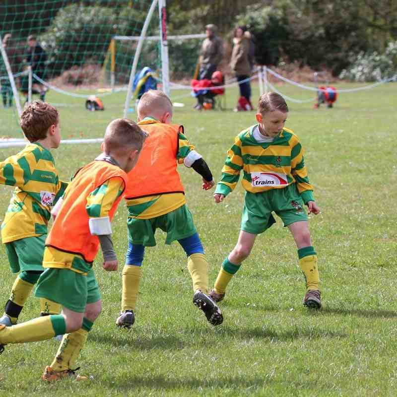 Under 7's Cup Final - 16th April 2016