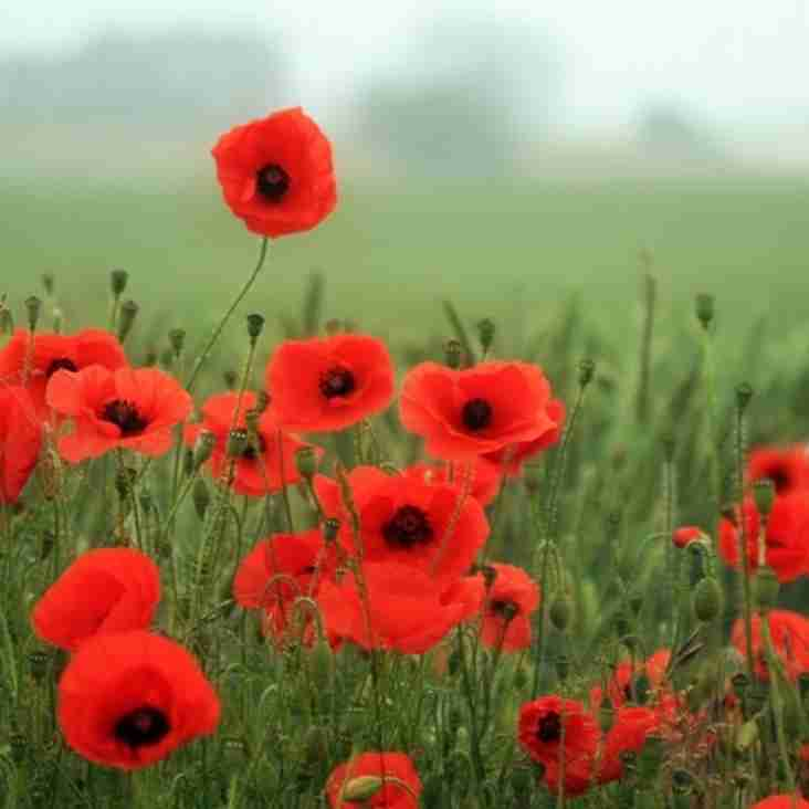 Two minute silence on Saturday to mark Remembrance