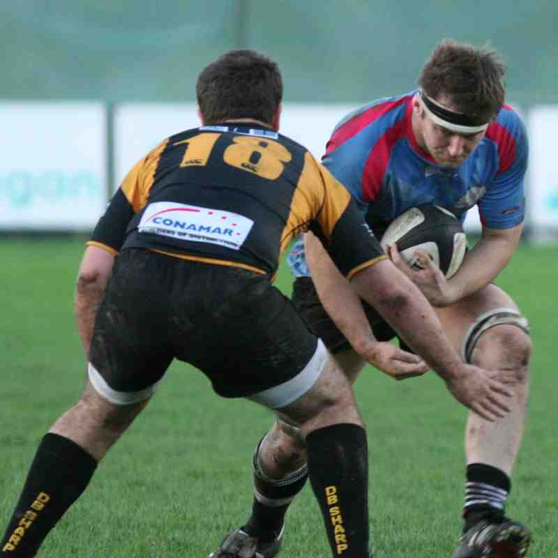 1st XV v Letchworth Home 07/11/2015