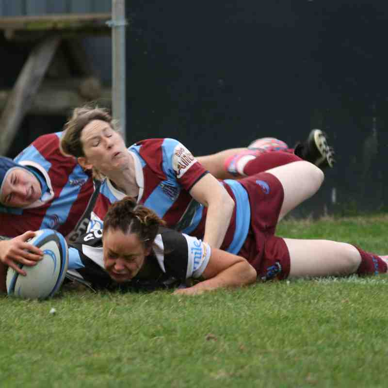Ladies 1st XV v Hove Ladies - Sun 23 Oct 2016