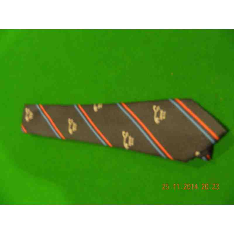 GRFC Club Tie (Junior)