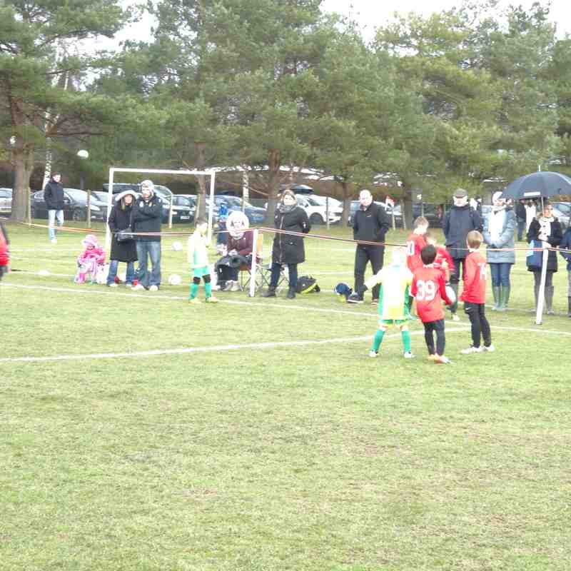 Foresters Wolves U8 v Westfield (29 Jan 17)