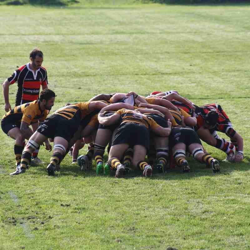 Teignmouth v Thornbury RFC