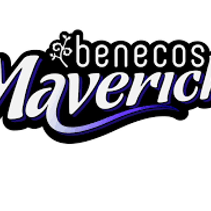 Mavericks Futures Academy place for Steph Winfield