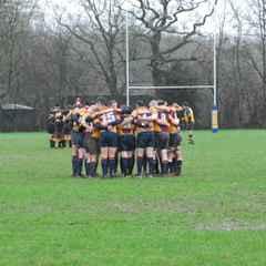 1st XV v Northampton Casuals