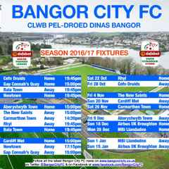 2016/17 Season Fixture Guide Available for Download