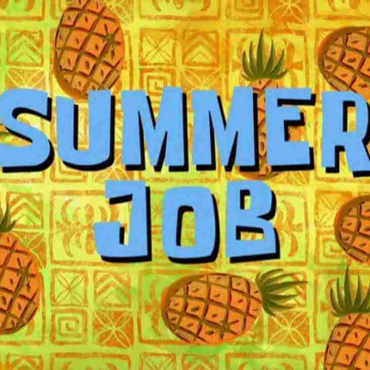 Summer job opportunity