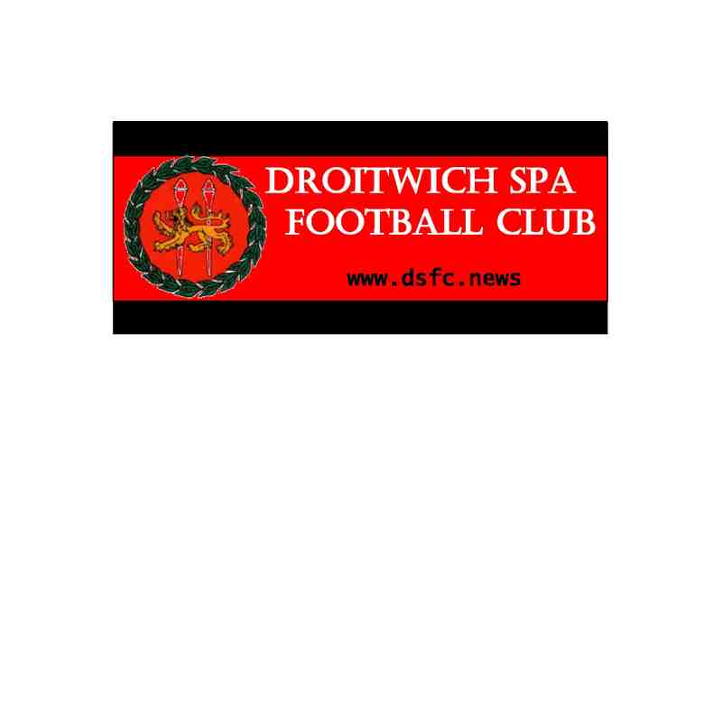 DSFC Car / Window Sticker