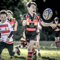 Harrogate RUFC vs. Ripon U9's