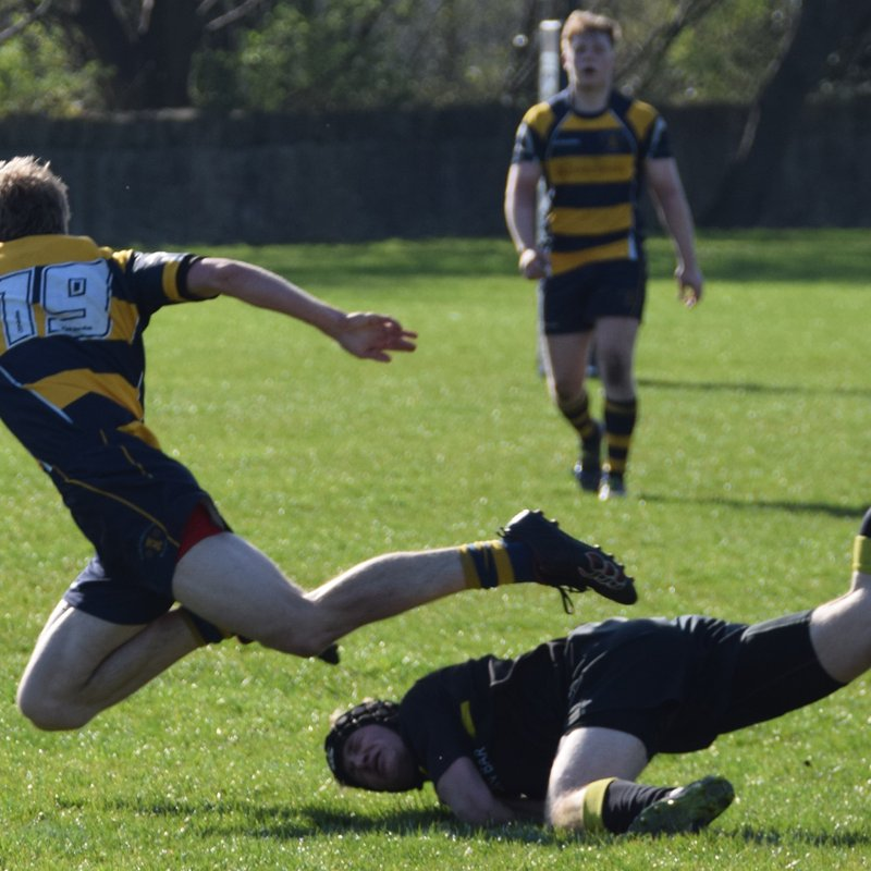 Trinity Accies 8 v Portobello RFC 32   09-04-2017