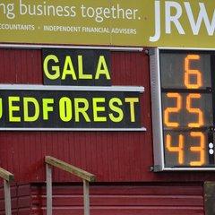 GALA V JED FOREST