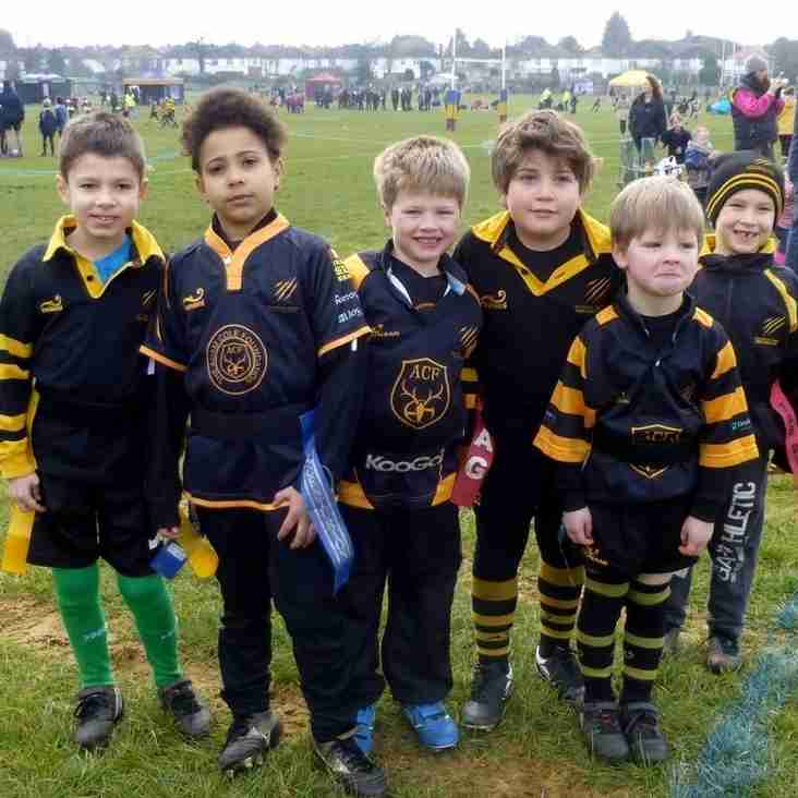 U7s Win their group at Old Colfieans Festival!