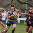 Old Leamingtonians Ladies victorious over Moseley Ladies
