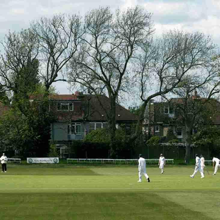 Stewart Davison Appointed as Director Of Cricket