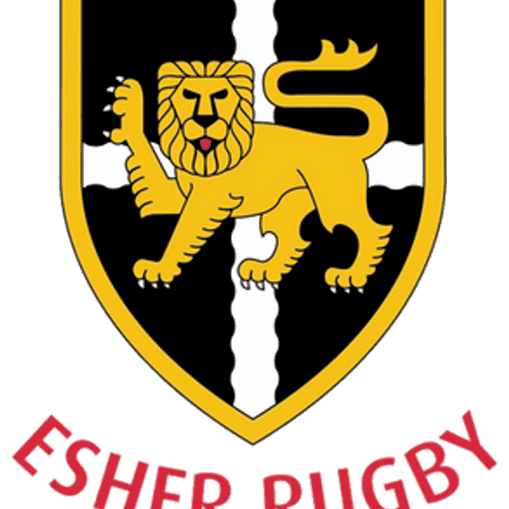 Esher preview