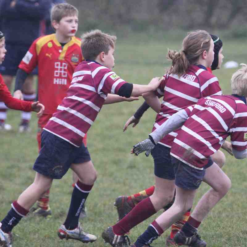 Shelford U11s vs Cambridge