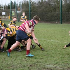 U14s County Cup vs Ely