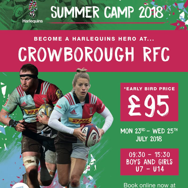 Harlequins Summer Camp returns to CRFC