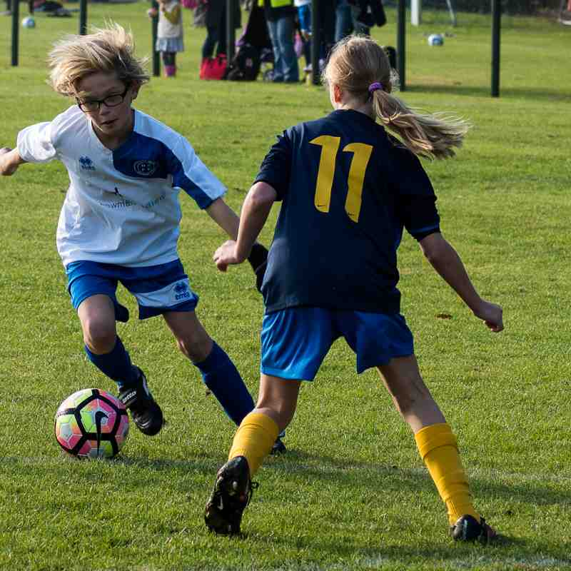 Under 11`s Blues v Harvesters - Sat 15 Oct 2016