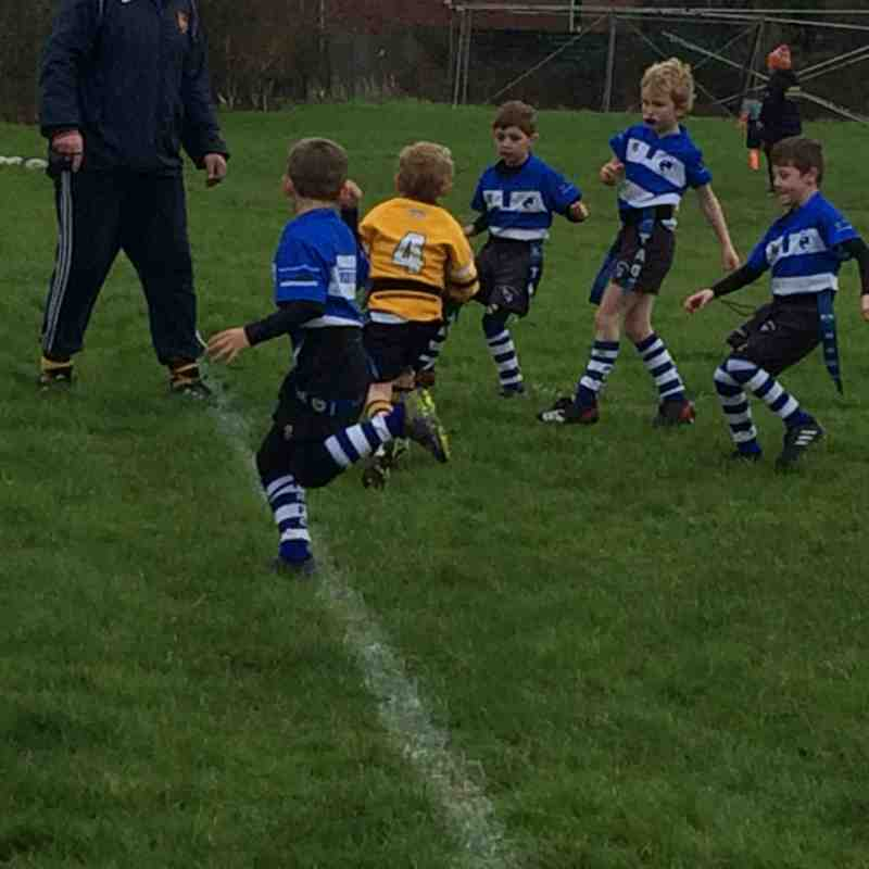 Under 7s vs Maldon
