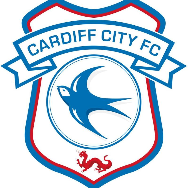 BIDEFORD Vs CARDIFF CITY XI TODAY!
