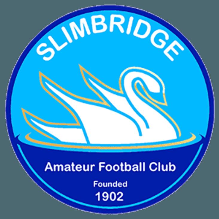 SLIMBRIDGE TRAVEL