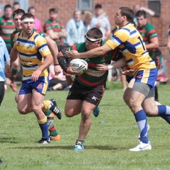 Valley Cougars vs Hemel Stags
