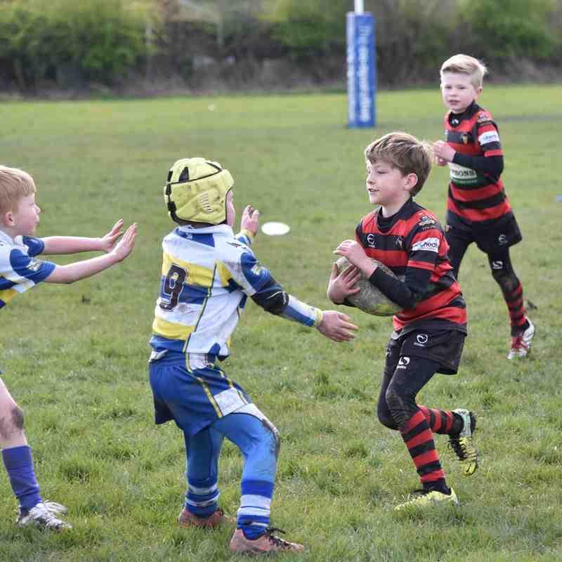 Under 8's  v Batley Boys ARLFC / Odsal Sedge - 10th April 2016