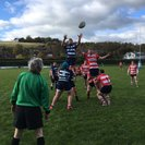 HELLINGLY CONCEDE MATCH TO LEWES