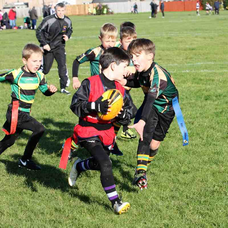 U8 Dragons vs Stamford