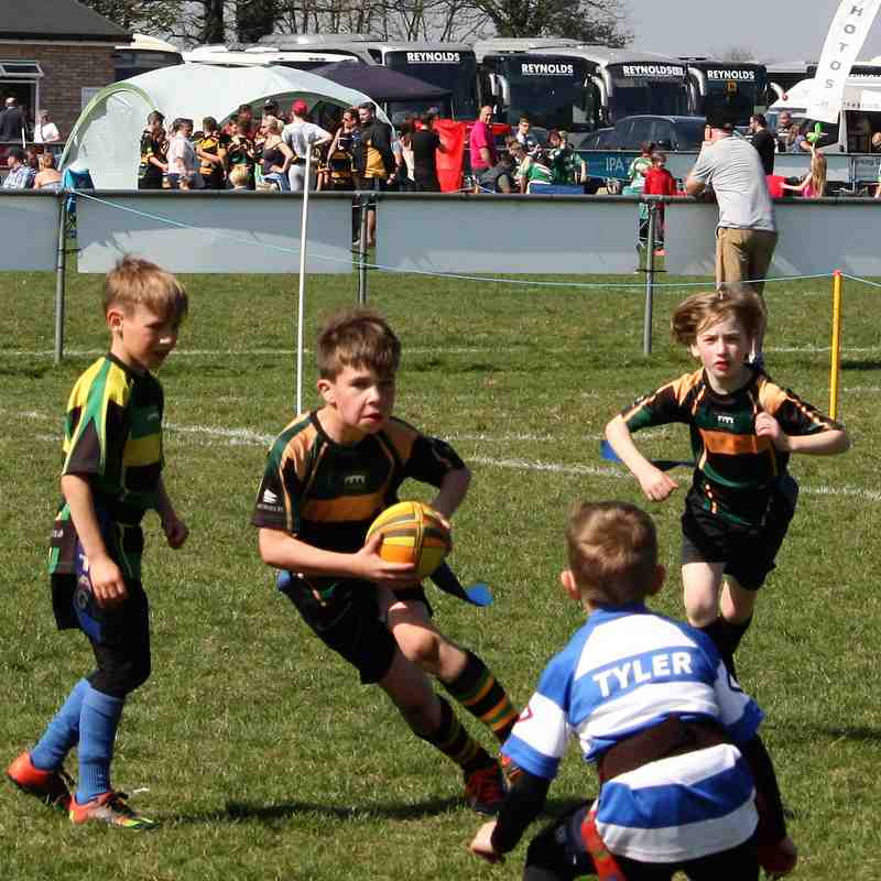U8 Dragons Holt Festival 2017