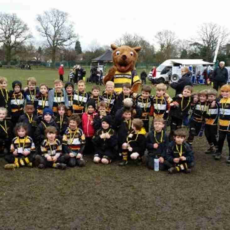 Camberley Festival of Rugby 6th March 2016