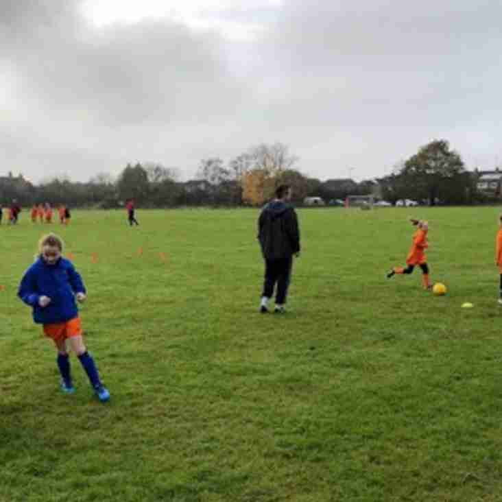 U10 Wildcats complete another successful training session