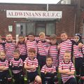 Eccles vs. ALDWINIANS  RUFC