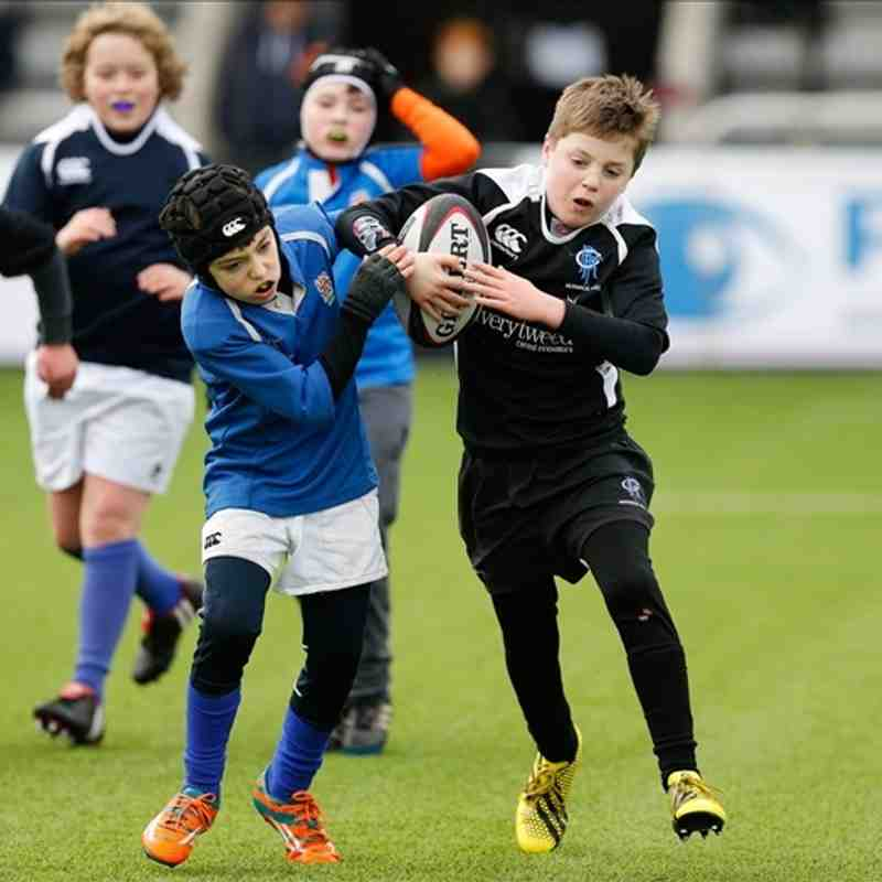 Berwick Bulldogs U10's Newcastle Falcons Tournament 31st Jan 2016