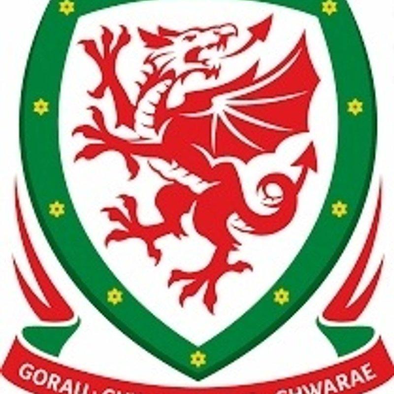 Welsh Cup  Q2 - Garden Village at Parc Ynysderw