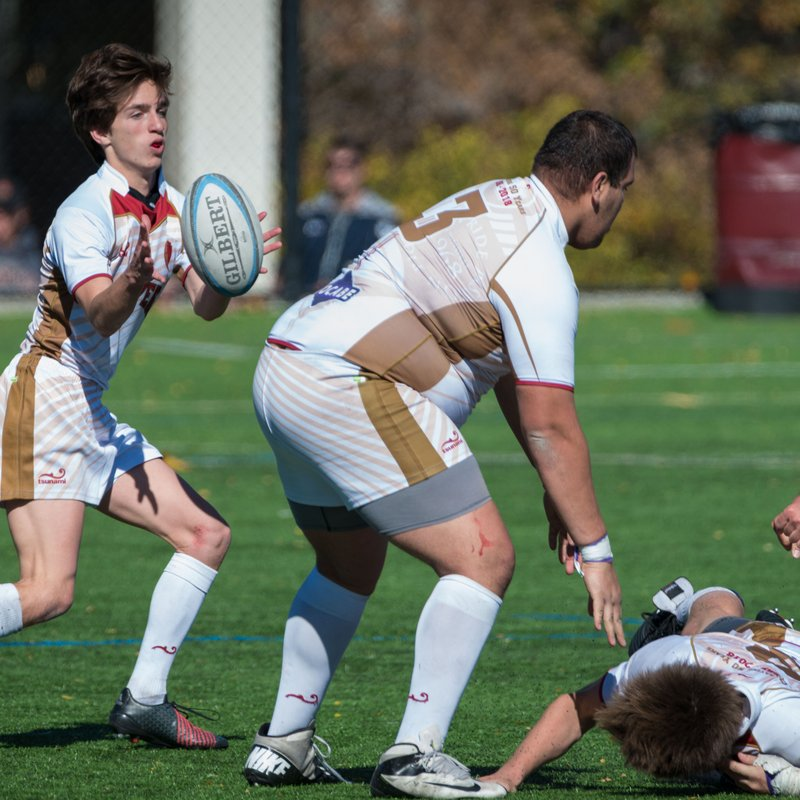 DU Rugby Fall to experienced Denver Barbarians Squad