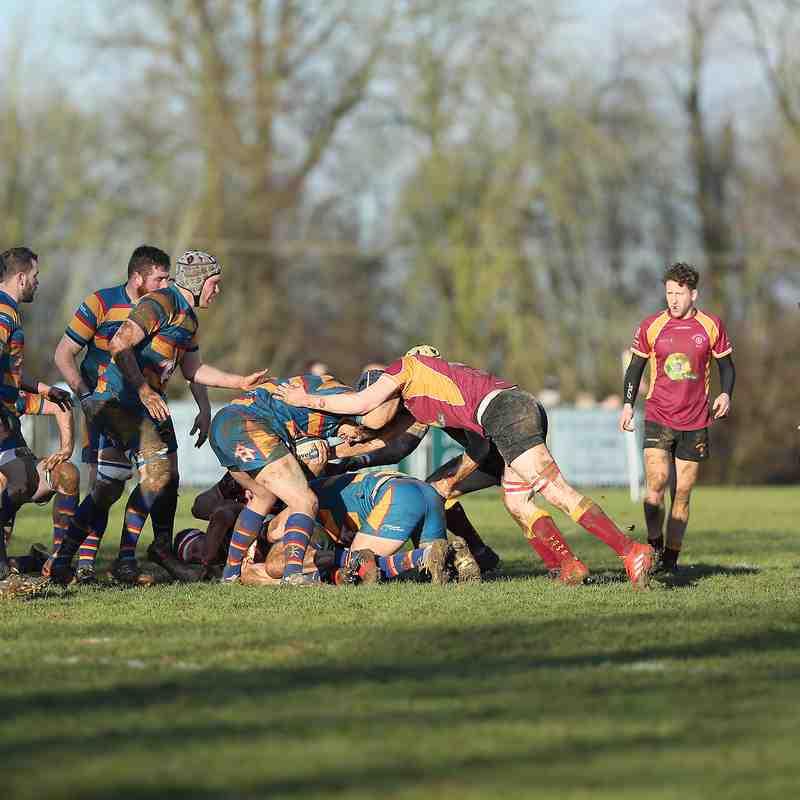 1st XV vs Halesonians by James Rudd