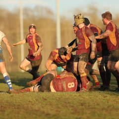 Tows vs Peterborough Lions by James Rudd