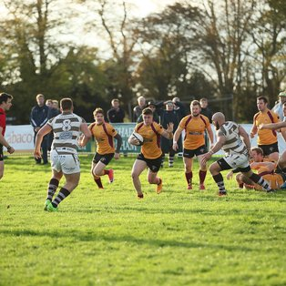Match Report: Towcestrians 33  -  31 Southend Saxons