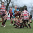Match Report: Towcestrians 31 - 10 Oundle RFC